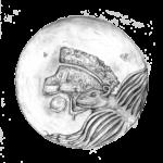 Din-Programme-Illustration-Poveglia-4
