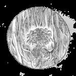 Din-Programme-Illustration-Visions-I-3